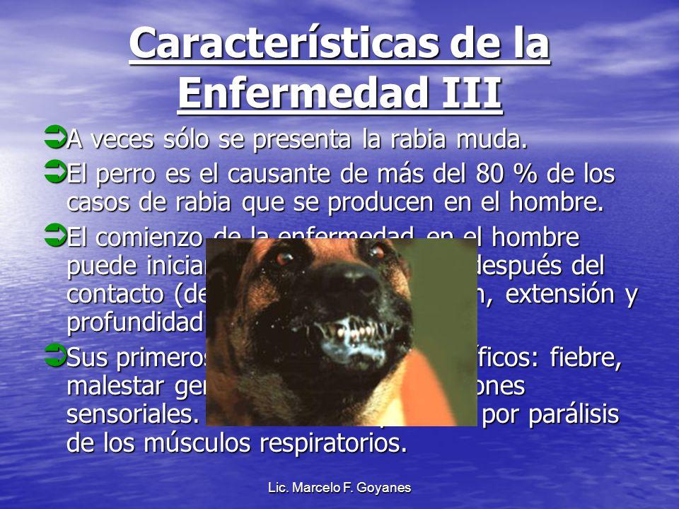 Lic. Marcelo F. Goyanes Características de la Enfermedad III A veces sólo se presenta la rabia muda. A veces sólo se presenta la rabia muda. El perro