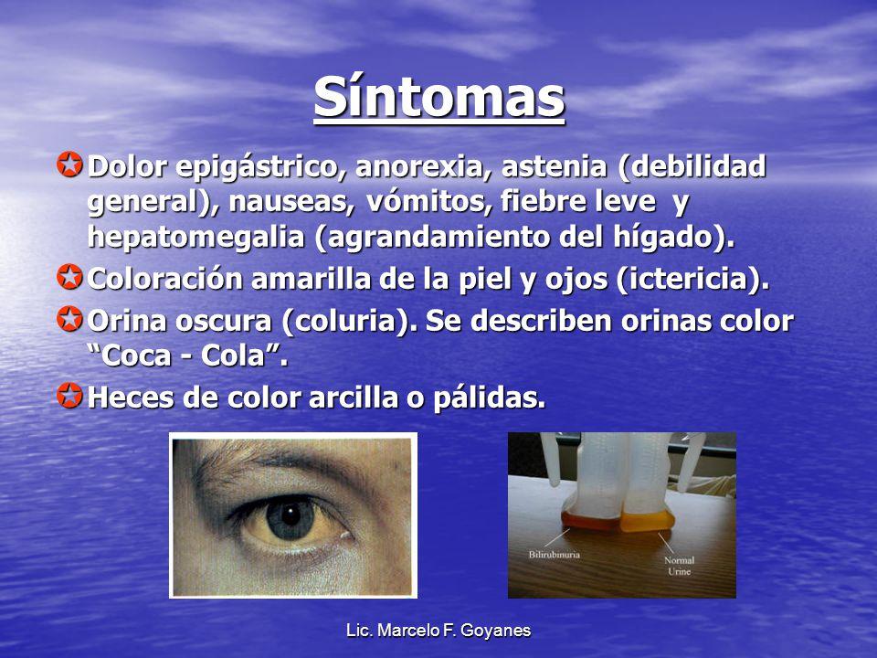 Síntomas Dolor epigástrico, anorexia, astenia (debilidad general), nauseas, vómitos, fiebre leve y hepatomegalia (agrandamiento del hígado). Dolor epi