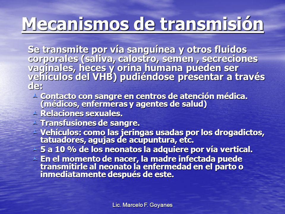 Lic. Marcelo F. Goyanes Mecanismos de transmisión Se transmite por vía sanguínea y otros fluidos corporales (saliva, calostro, semen, secreciones vagi