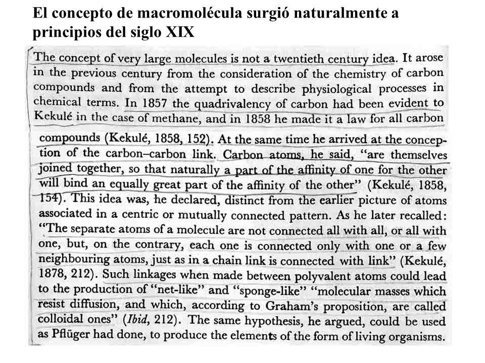 El concepto de macromolécula surgió naturalmente a principios del siglo XIX