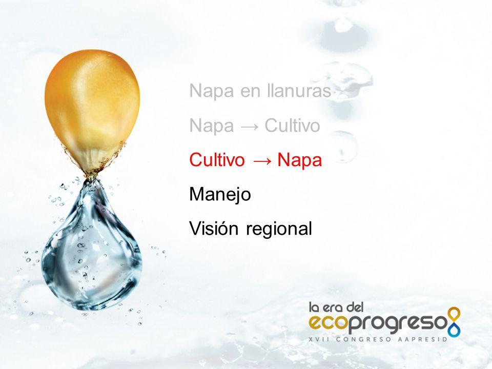 Magdala, La Biznaga - Pehuajo 1.2 m 500 m desnivel ( cm ) SOJA 1TRIGO/SOJA 2 -150 -100 -50 50 0 desnivel (cm) MAIZ