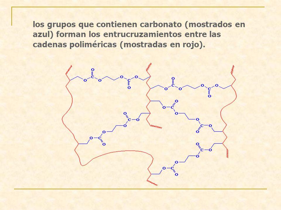 los grupos que contienen carbonato (mostrados en azul) forman los entrucruzamientos entre las cadenas poliméricas (mostradas en rojo).
