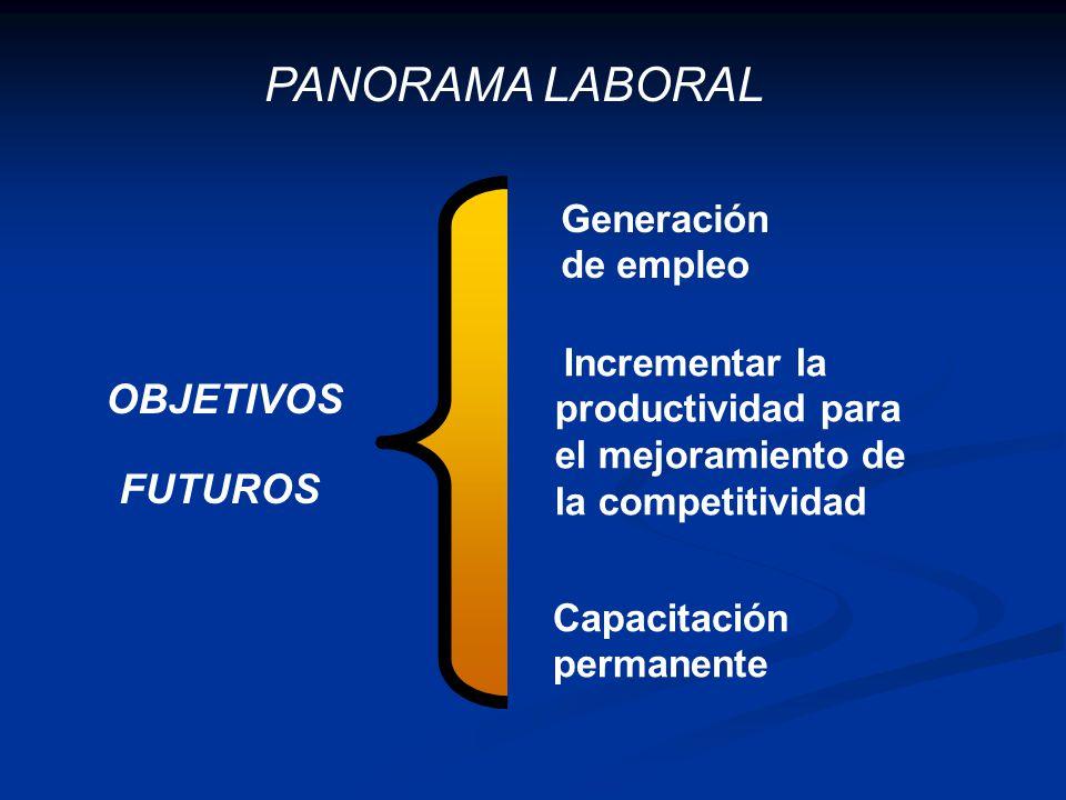 OBJETIVOS FUTUROS Generación de empleo Incrementar la productividad para el mejoramiento de la competitividad Capacitación permanente PANORAMA LABORAL