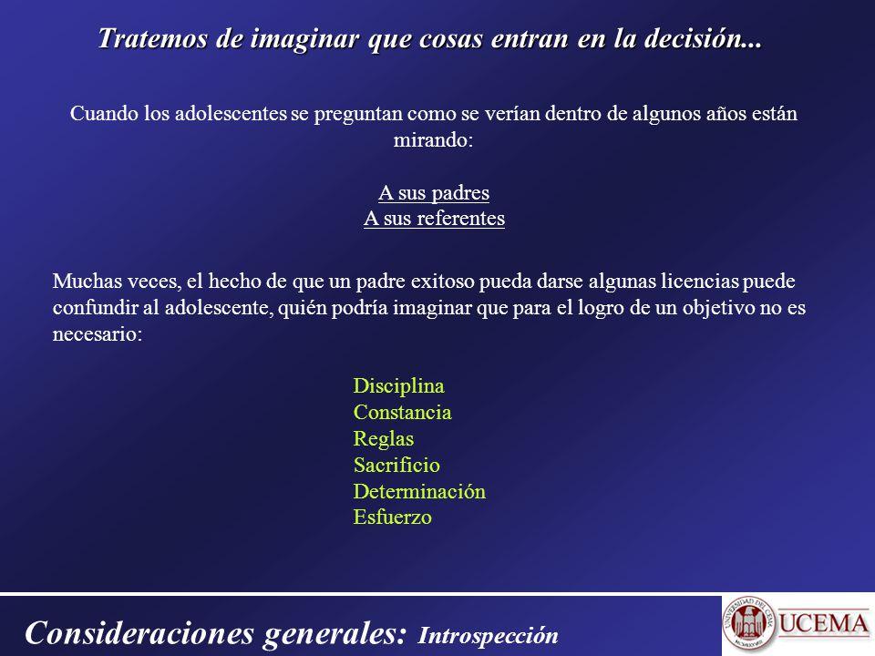 Consideraciones generales: Introspección Tratemos de imaginar que cosas entran en la decisión...