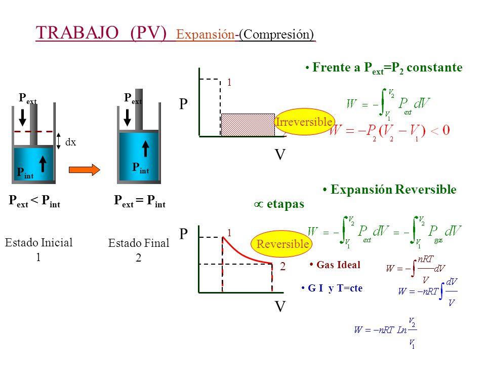 TRABAJO (PV) Expansión-(Compresión) P ext < P int P ext P int dx Estado Inicial 1 P V 1 P ext P int P ext = P int Estado Final 2 2 V 1 P 2 Frente a P