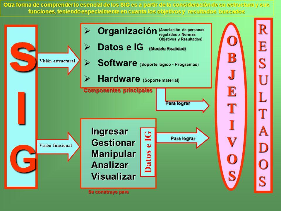 Ingresar Gestionar Manipular Analizar Visualizar Ingresar Gestionar Manipular Analizar Visualizar Organización (Modelo Realidad) Datos e IG (Modelo Re