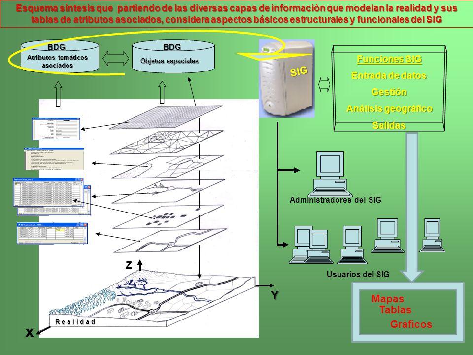 R e a l i d a d Atributos temáticos asociados Objetos espaciales Funciones SIG Entrada de datos Gestión Análisis geográfico Salidas Administradores de