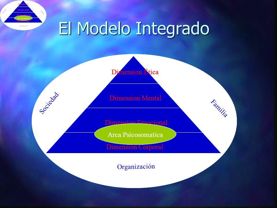 Sociedad Familia Organización Dimension Corporal Dimension Etica Dimension Mental Dimension Emocional Area Psicosomatica Liderazgo Integral Decisiones