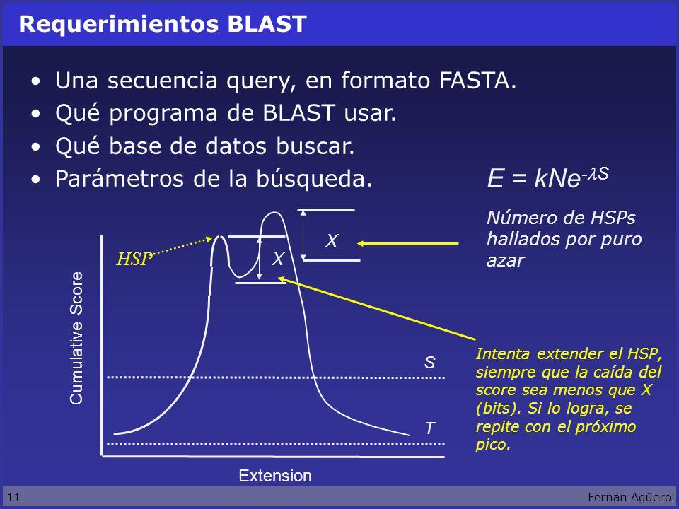 11Fernán Agüero Requerimientos BLAST Una secuencia query, en formato FASTA.