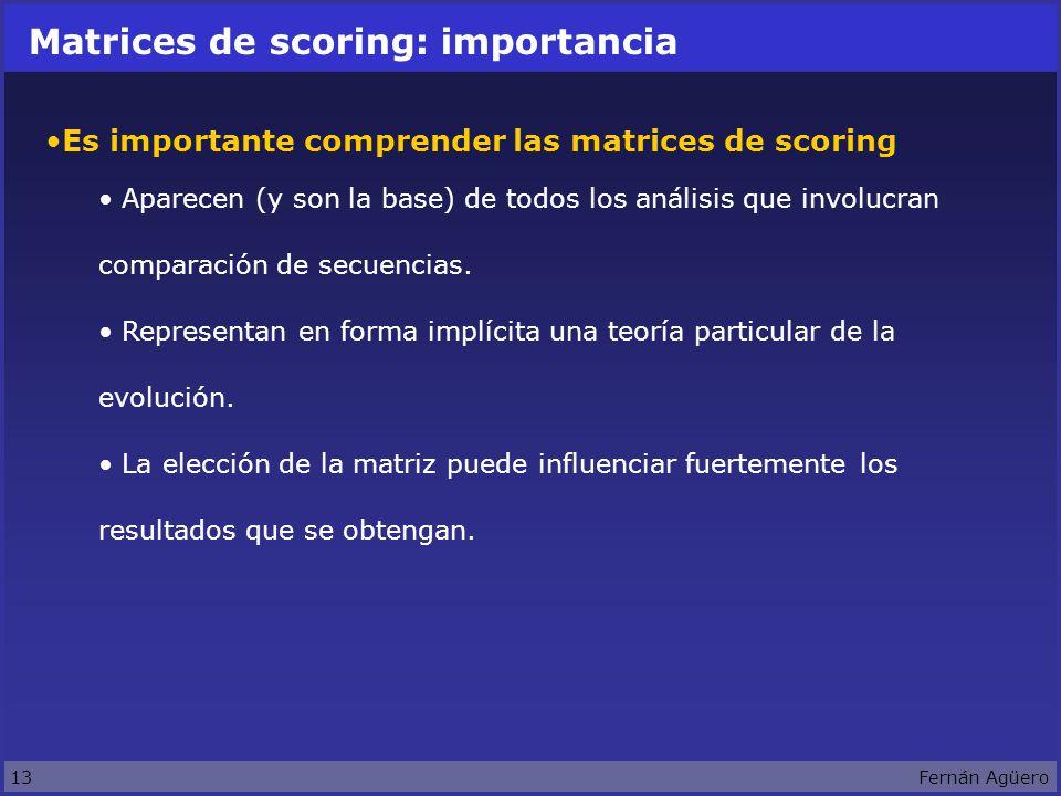 13Fernán Agüero Matrices de scoring: importancia Es importante comprender las matrices de scoring Aparecen (y son la base) de todos los análisis que involucran comparación de secuencias.