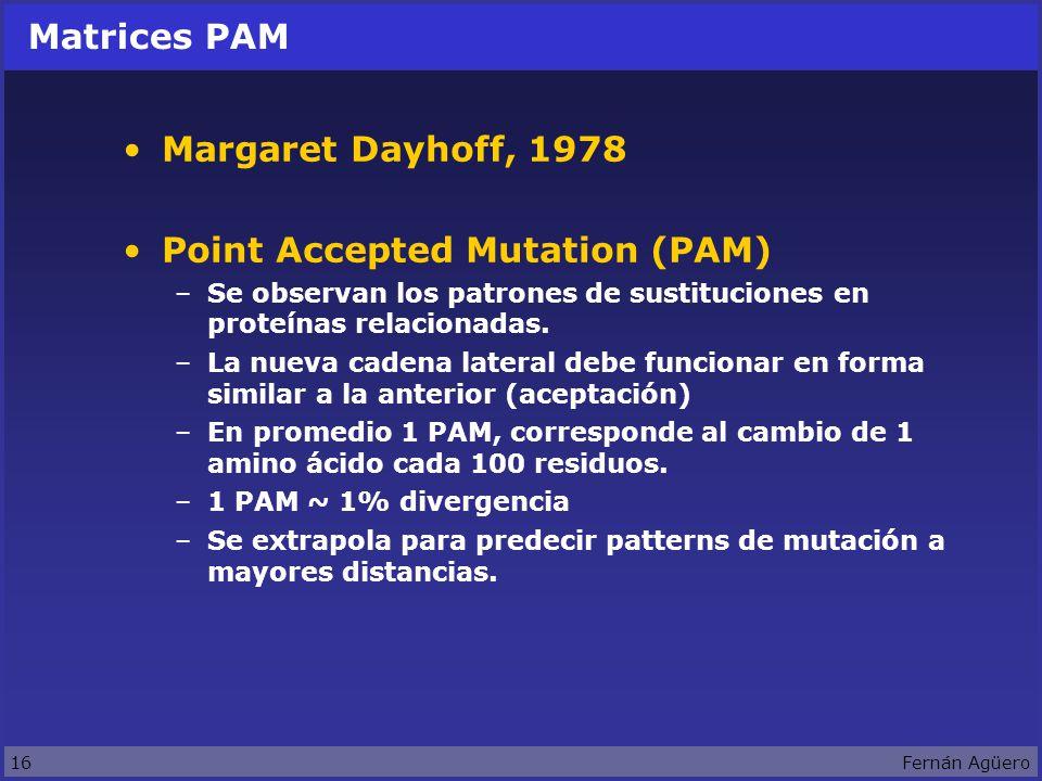 16Fernán Agüero Matrices PAM Margaret Dayhoff, 1978 Point Accepted Mutation (PAM) –Se observan los patrones de sustituciones en proteínas relacionadas.