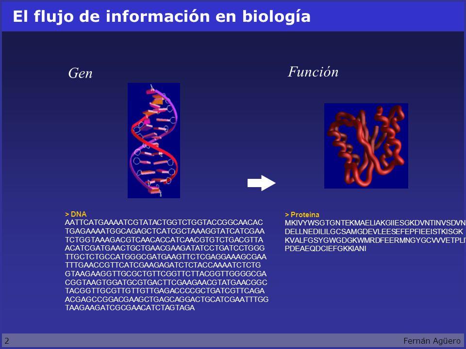 2Fernán Agüero El flujo de información en biología > DNA AATTCATGAAAATCGTATACTGGTCTGGTACCGGCAACAC TGAGAAAATGGCAGAGCTCATCGCTAAAGGTATCATCGAA TCTGGTAAAGACGTCAACACCATCAACGTGTCTGACGTTA ACATCGATGAACTGCTGAACGAAGATATCCTGATCCTGGG TTGCTCTGCCATGGGCGATGAAGTTCTCGAGGAAAGCGAA TTTGAACCGTTCATCGAAGAGATCTCTACCAAAATCTCTG GTAAGAAGGTTGCGCTGTTCGGTTCTTACGGTTGGGGCGA CGGTAAGTGGATGCGTGACTTCGAAGAACGTATGAACGGC TACGGTTGCGTTGTTGTTGAGACCCCGCTGATCGTTCAGA ACGAGCCGGACGAAGCTGAGCAGGACTGCATCGAATTTGG TAAGAAGATCGCGAACATCTAGTAGA > Proteina MKIVYWSGTGNTEKMAELIAKGIIESGKDVNTINVSDVNI DELLNEDILILGCSAMGDEVLEESEFEPFIEEISTKISGK KVALFGSYGWGDGKWMRDFEERMNGYGCVVVETPLIVQNE PDEAEQDCIEFGKKIANI Gen Función