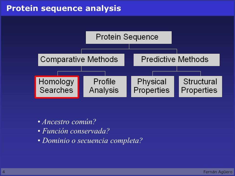 4Fernán Agüero Protein sequence analysis Ancestro común.