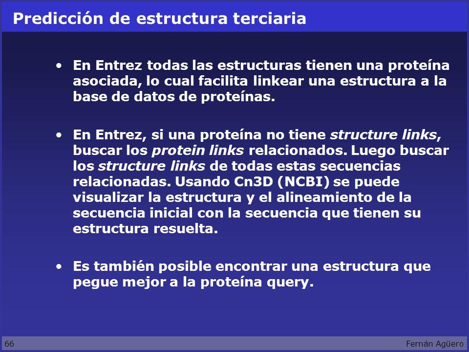 66Fernán Agüero Predicción de estructura terciaria En Entrez todas las estructuras tienen una proteína asociada, lo cual facilita linkear una estructura a la base de datos de proteínas.