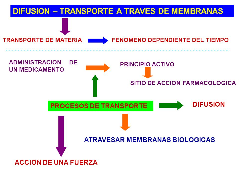 DIFUSION – TRANSPORTE A TRAVES DE MEMBRANAS TRANSPORTE DE MATERIA FENOMENO DEPENDIENTE DEL TIEMPO ADMINISTRACION DE UN MEDICAMENTO PRINCIPIO ACTIVO SI