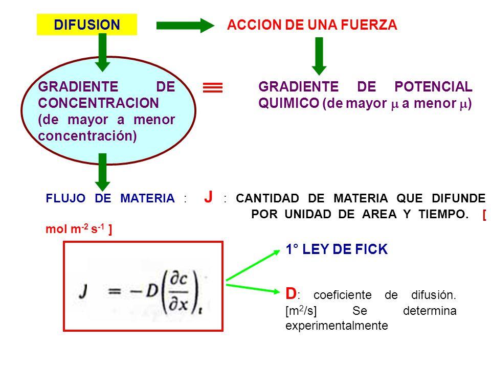 GRADIENTE DE POTENCIAL QUIMICO (de mayor a menor ) GRADIENTE DE CONCENTRACION (de mayor a menor concentración) DIFUSION FLUJO DE MATERIA : J : CANTIDA