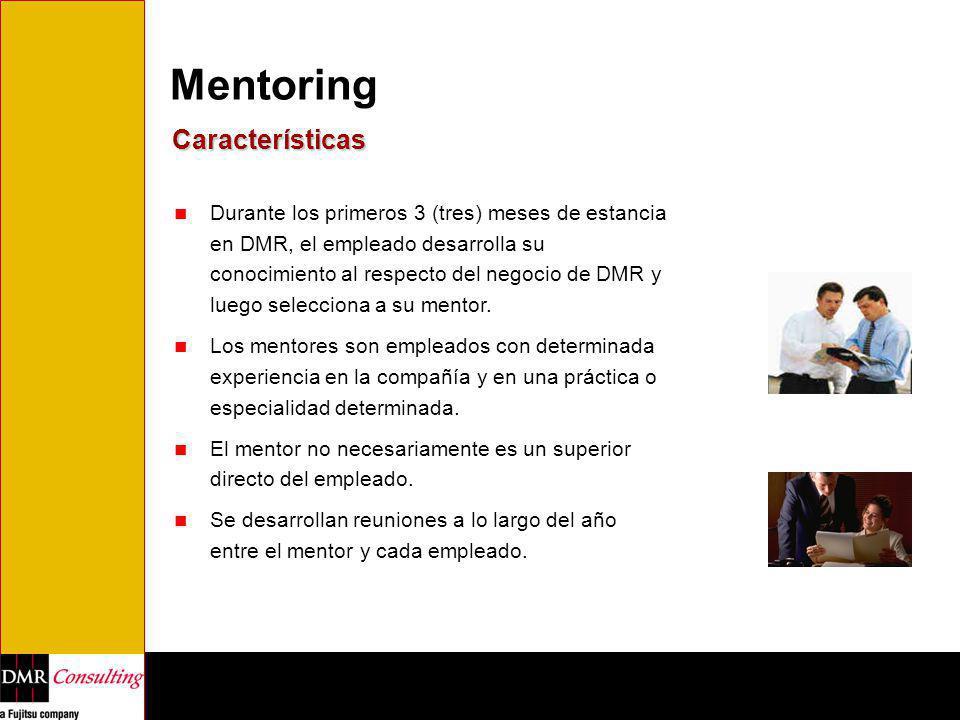 Mentoring Características Durante los primeros 3 (tres) meses de estancia en DMR, el empleado desarrolla su conocimiento al respecto del negocio de DM