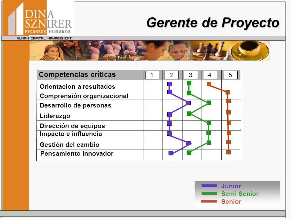 Gerente de Proyecto Junior Semi Senior Senior Competencias críticas 12345 Orientacion a resultados Comprensión organizacional Desarrollo de personas D