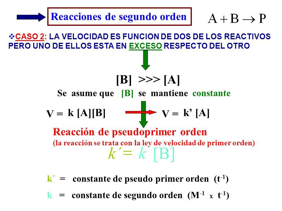 Reacciones de segundo orden CASO 2: LA VELOCIDAD ES FUNCION DE DOS DE LOS REACTIVOS PERO UNO DE ELLOS ESTA EN EXCESO RESPECTO DEL OTRO Reacción de pse