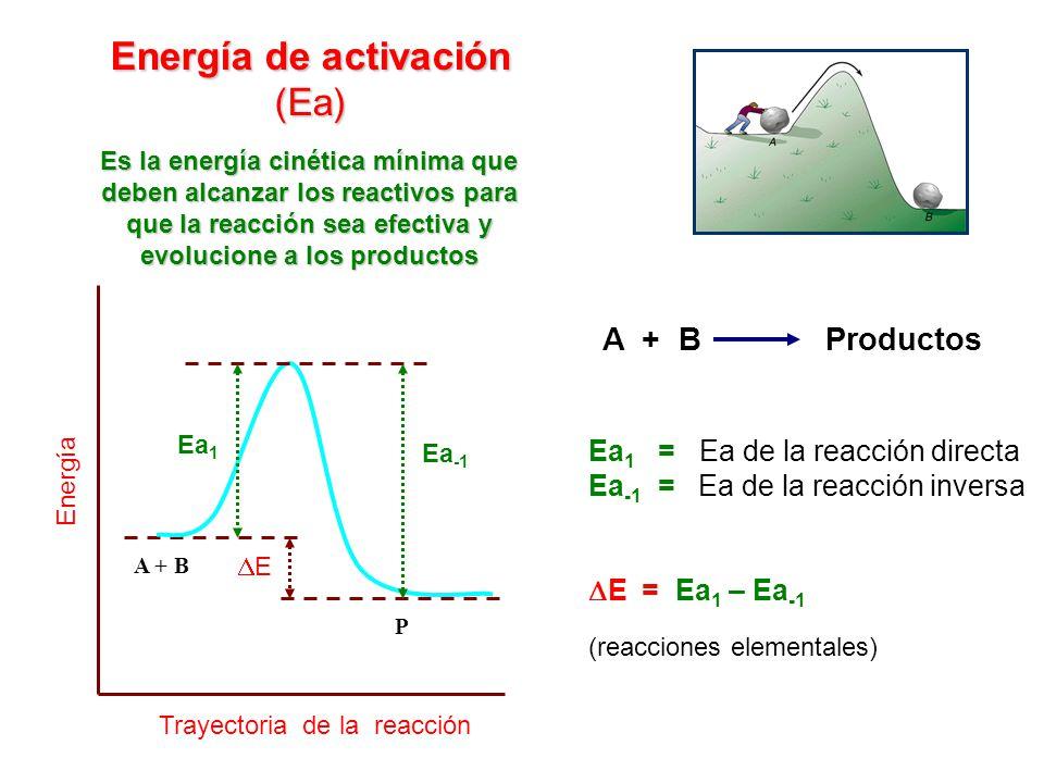 Energía de activación (Ea) A + B P Trayectoria de la reacción Energía Ea -1 Ea 1 E Ea 1 = Ea de la reacción directa Ea -1 = Ea de la reacción inversa