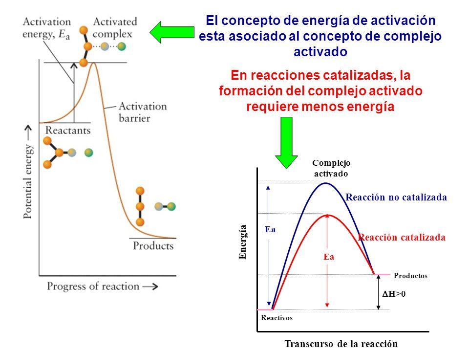 El concepto de energía de activación esta asociado al concepto de complejo activado En reacciones catalizadas, la formación del complejo activado requ