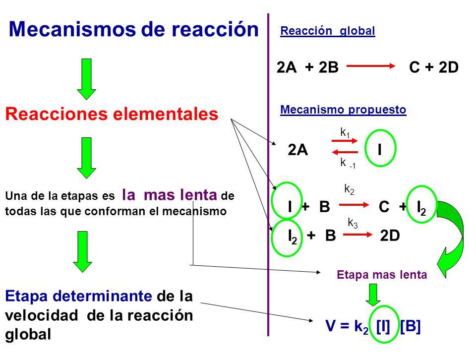 Mecanismos de reacción Reacciones elementales Una de la etapas es la mas lenta de todas las que conforman el mecanismo Etapa determinante de la veloci