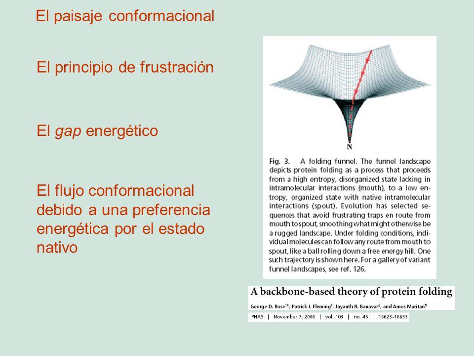 El principio de frustración El gap energético El flujo conformacional debido a una preferencia energética por el estado nativo El paisaje conformacion