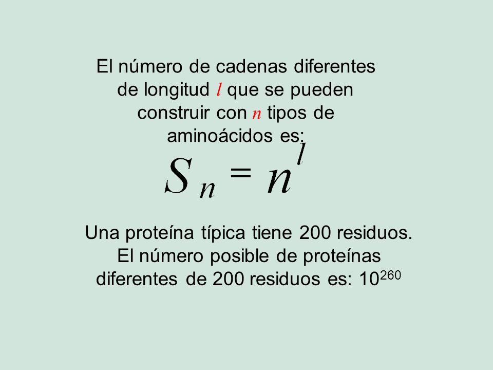 El número de cadenas diferentes de longitud l que se pueden construir con n tipos de aminoácidos es: Una proteína típica tiene 200 residuos. El número