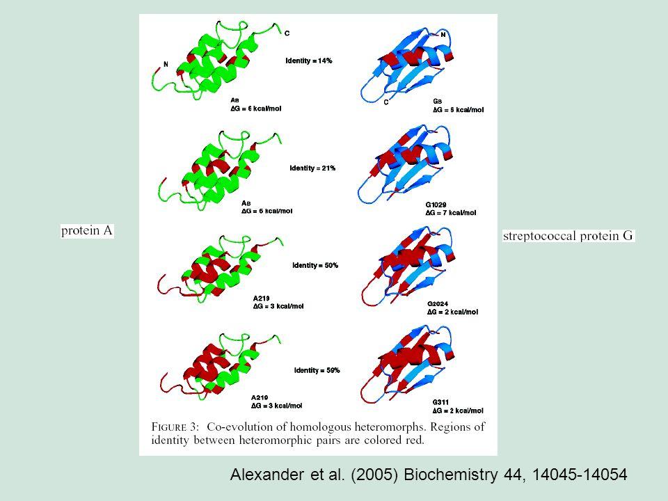 Alexander et al. (2005) Biochemistry 44, 14045-14054