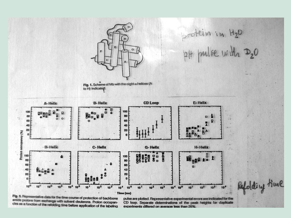 Mossbauer Spectroscopy in Biological Systems: Proceedings of a meeting held at Allerton House, Monticello, Illinois.