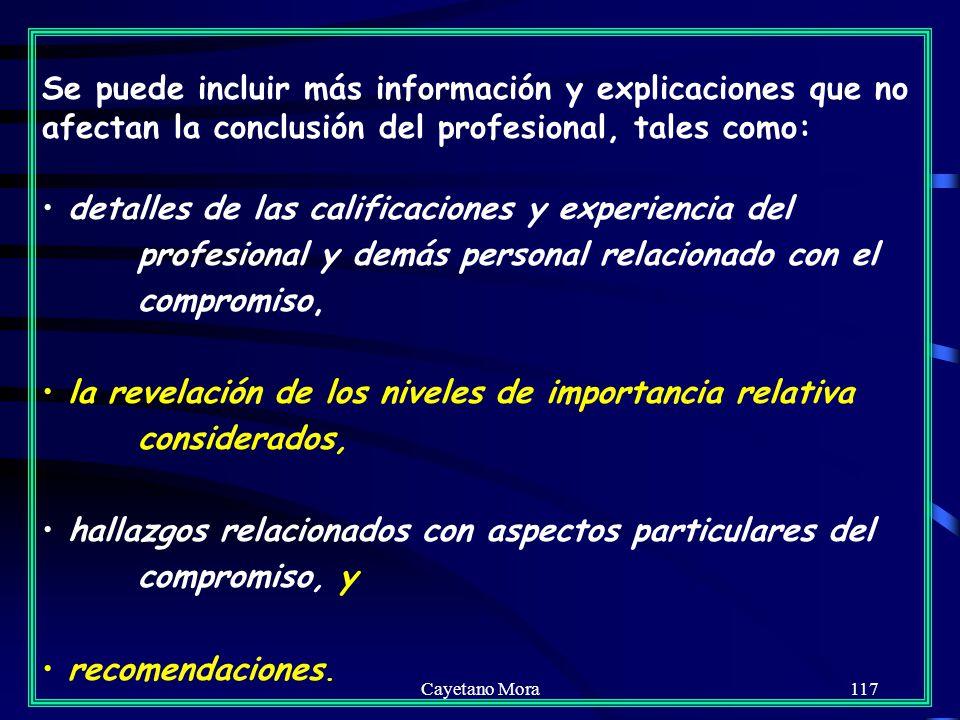 Cayetano Mora117 Se puede incluir más información y explicaciones que no afectan la conclusión del profesional, tales como: detalles de las calificaciones y experiencia del profesional y demás personal relacionado con el compromiso, la revelación de los niveles de importancia relativa considerados, hallazgos relacionados con aspectos particulares del compromiso, y recomendaciones.