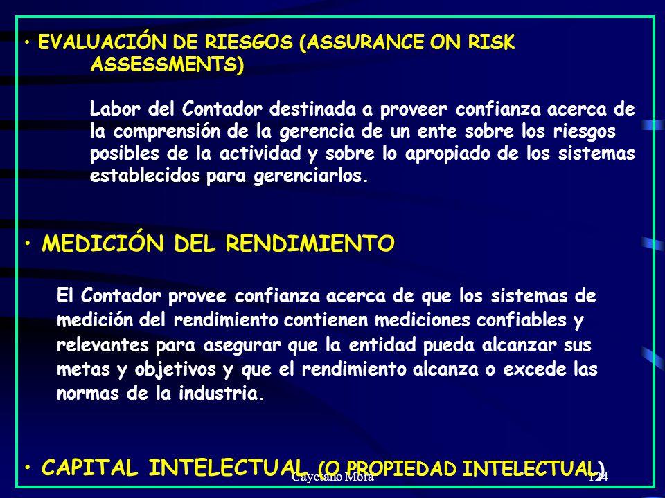 Cayetano Mora124 EVALUACIÓN DE RIESGOS (ASSURANCE ON RISK ASSESSMENTS) Labor del Contador destinada a proveer confianza acerca de la comprensión de la gerencia de un ente sobre los riesgos posibles de la actividad y sobre lo apropiado de los sistemas establecidos para gerenciarlos.