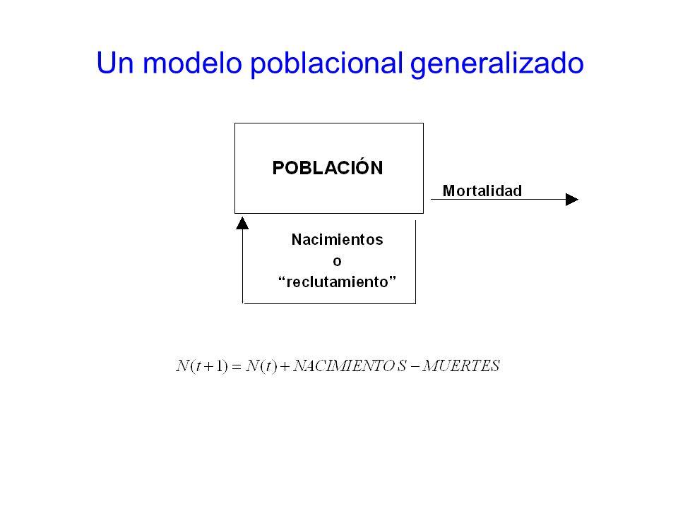3 Modelo de población cerrada Población unitaria –Unidad poblacional auto-sustentable, cerrada.