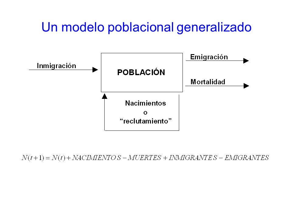 35 Metapoblaciones - Modelos Estructura espacial realista y ocupación: función de incidencia –Se utiliza una función de incidencia, la cual modela la probabilidad que el parche i esté o no ocupado: –Se estiman los parámetros (, x, ) por máxima verosimilitud, comparando ocupación observada pi con incidencia Ji –Se utiliza simulación numérica para generar patrones de ocupación en base a función de incidencia
