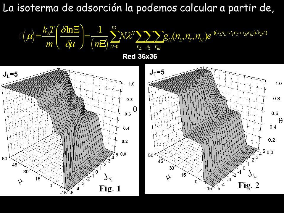 La isoterma de adsorción la podemos calcular a partir de, J L =5 J T =5 Red 36x36