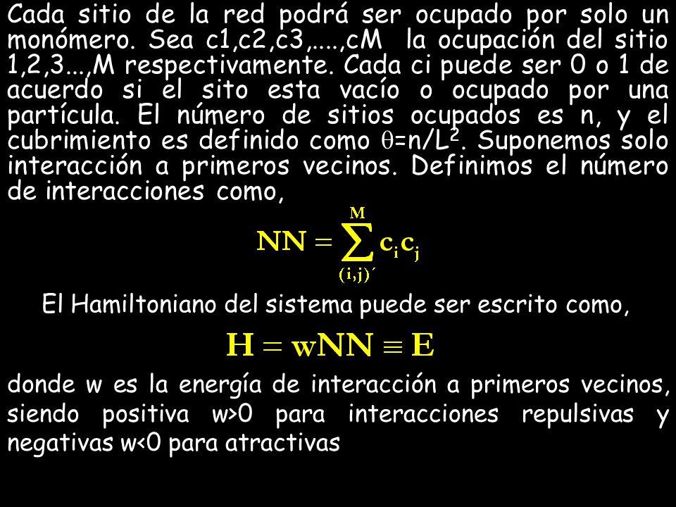 Cada sitio de la red podrá ser ocupado por solo un monómero. Sea c1,c2,c3,....,cM la ocupación del sitio 1,2,3...,M respectivamente. Cada ci puede ser