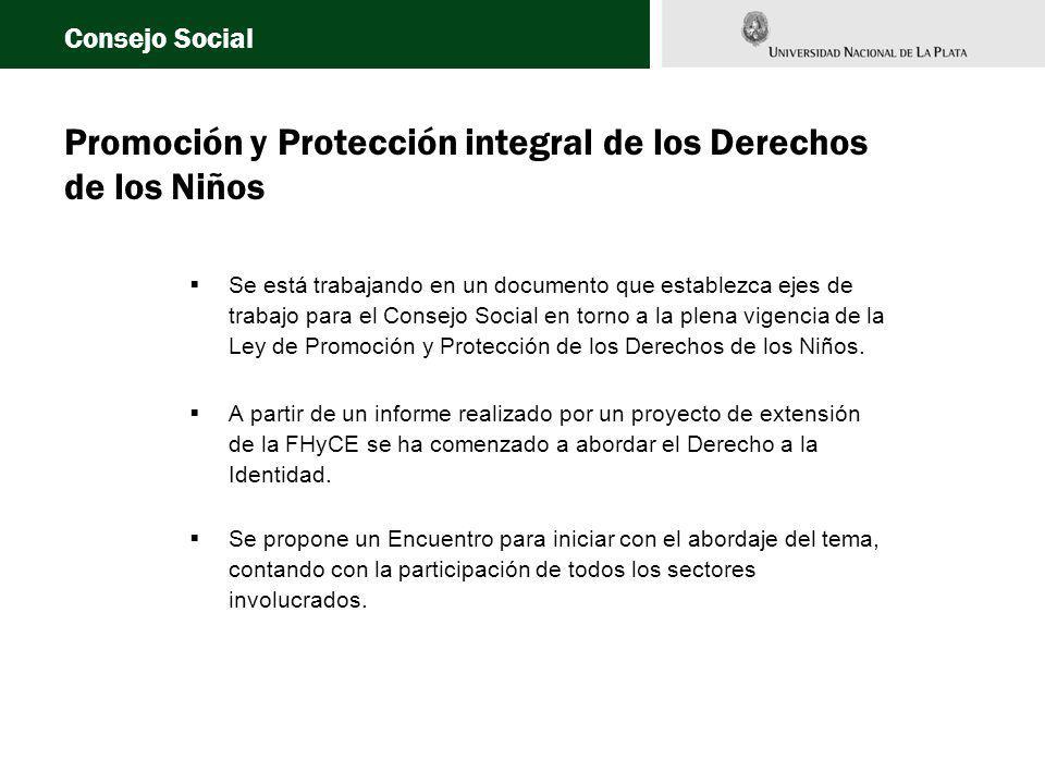 Promoción y Protección integral de los Derechos de los Niños Se está trabajando en un documento que establezca ejes de trabajo para el Consejo Social en torno a la plena vigencia de la Ley de Promoción y Protección de los Derechos de los Niños.