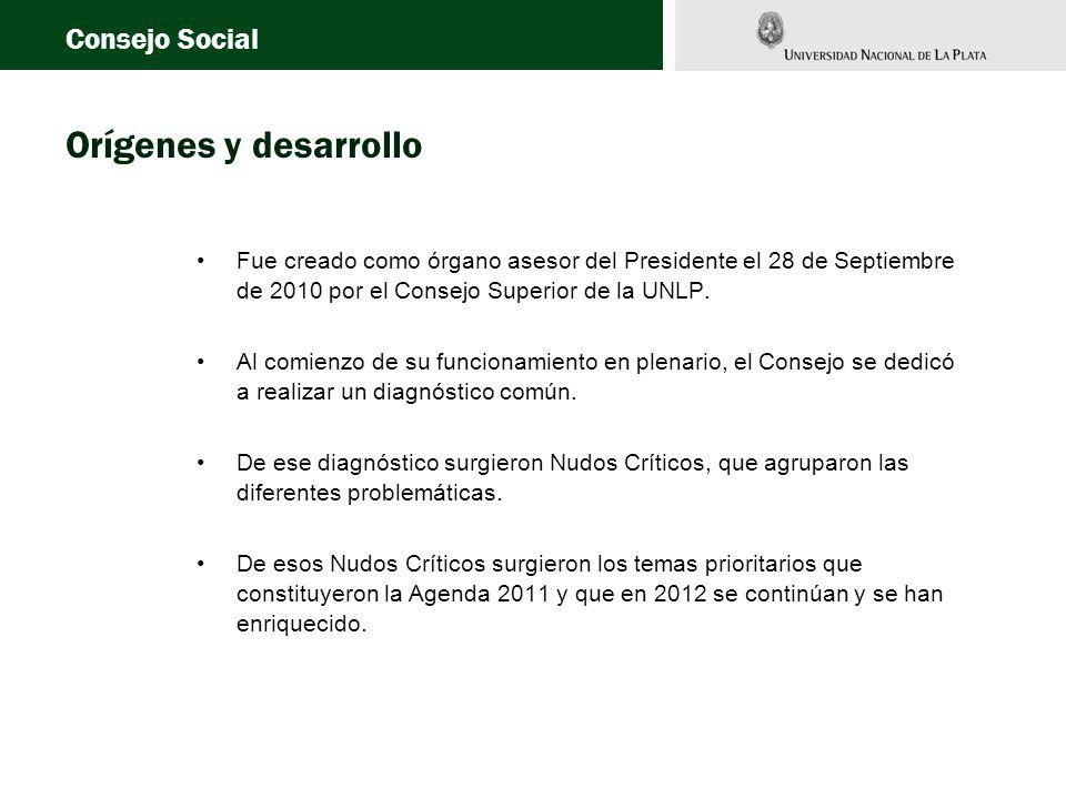 Fue creado como órgano asesor del Presidente el 28 de Septiembre de 2010 por el Consejo Superior de la UNLP.