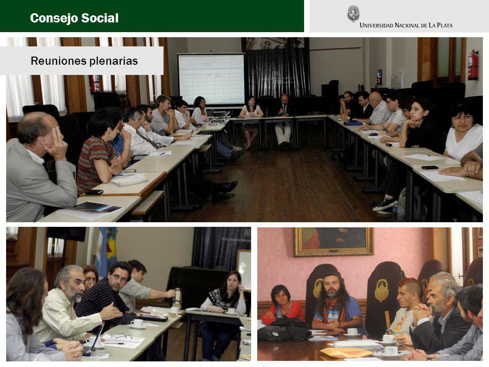 Consejo Social Reuniones plenarias