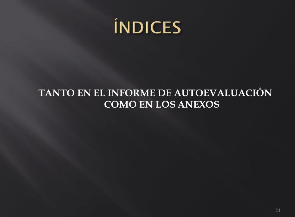 TANTO EN EL INFORME DE AUTOEVALUACIÓN COMO EN LOS ANEXOS 24