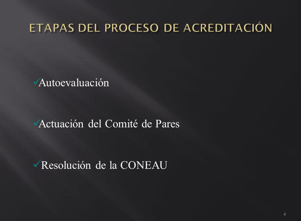 1.Resolución de convocatoria 2. Pautas de carga - Segunda Fase 3.