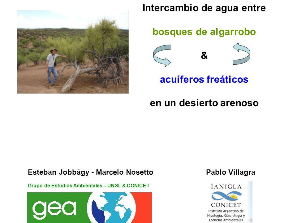 Intercambio de agua entre bosques de algarrobo & acuíferos freáticos en un desierto arenoso Esteban Jobbágy - Marcelo Nosetto Pablo Villagra Grupo de