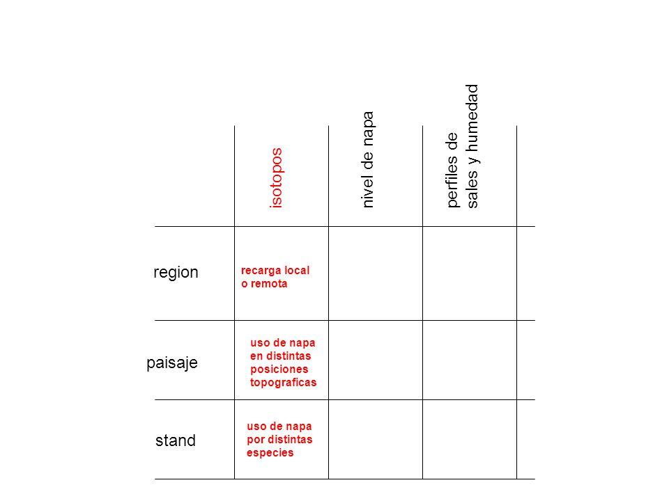 region paisaje stand isotopos nivel de napa perfiles de sales y humedad recarga local o remota uso de napa por distintas especies uso de napa en disti