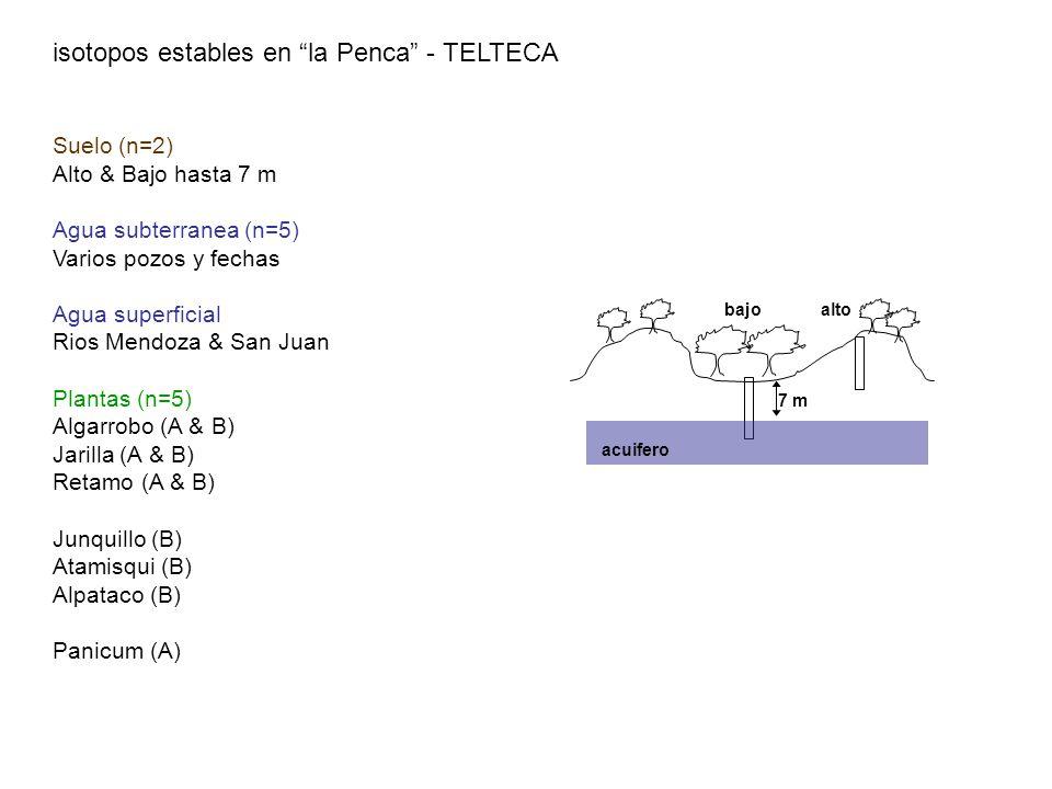 altobajo acuifero 7 m isotopos estables en la Penca - TELTECA Suelo (n=2) Alto & Bajo hasta 7 m Agua subterranea (n=5) Varios pozos y fechas Agua supe