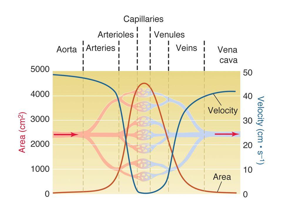 ÁREA SECCIONAL Y VELOCIDAD Q=10ml/s A= 2cm 2 10cm 2 1cm 2 V= 5cm/s 1cm/s 10cm/s V = Q / A abc