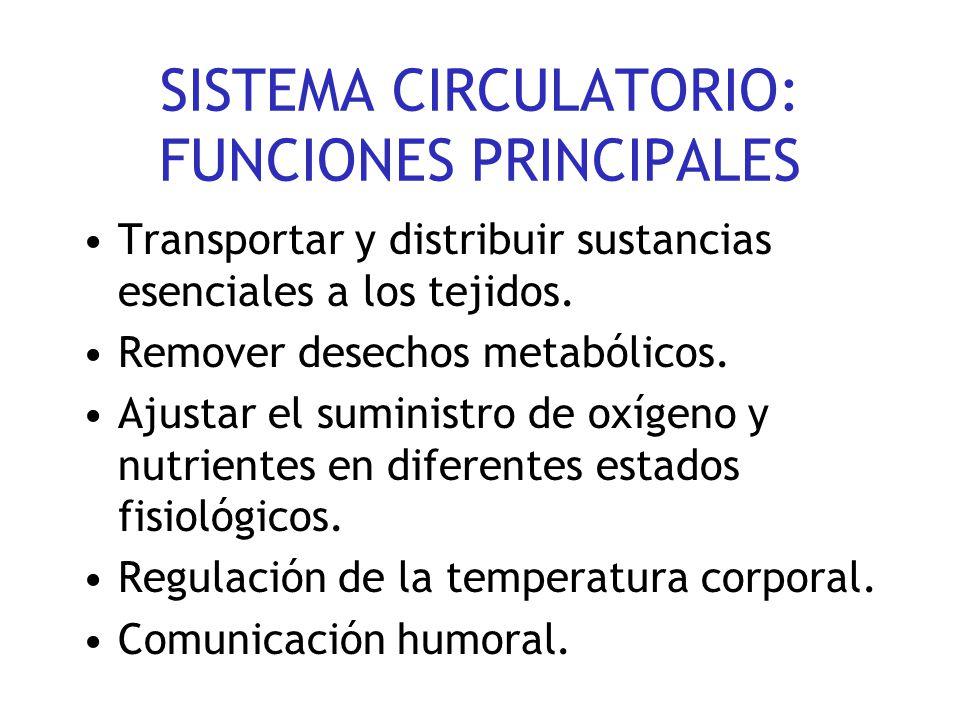 SISTEMA CIRCULATORIO: FUNCIONES PRINCIPALES Transportar y distribuir sustancias esenciales a los tejidos.
