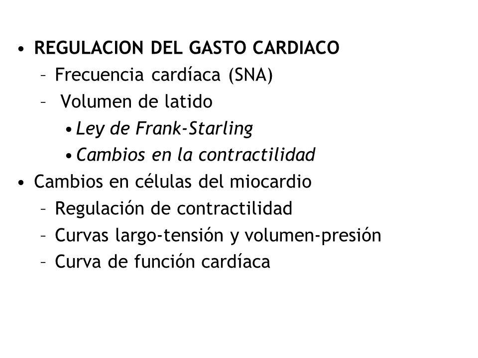 Gasto cardíaco Método de Fick: VO 2 = ([O 2 ] a - [O 2 ] v ) x Flujo Flujo = VO 2 [O 2 ] a - [O 2 ] v Espirometría (250 ml/min) Sangre Arterial (20 ml