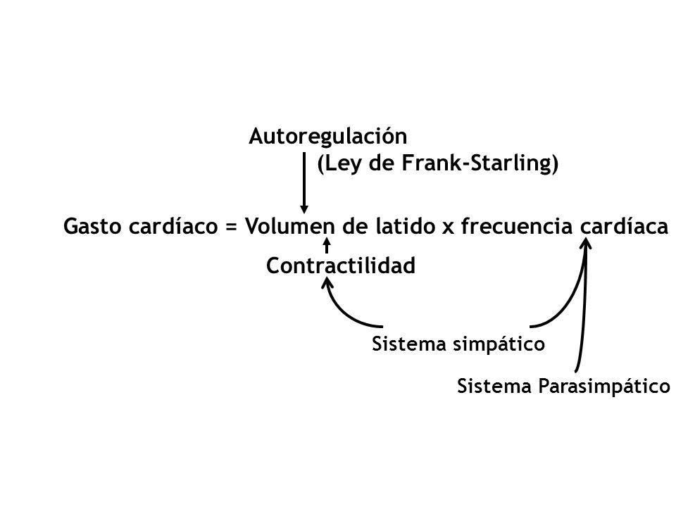 REGULACION DEL GASTO CARDIACO –Frecuencia cardíaca (SNA) – Volumen de latido Ley de Frank-Starling Cambios en la contractilidad Cambios en células del