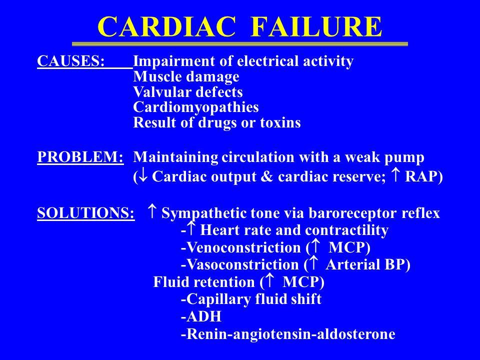 RESPONSE TO HEMORRHAGE Sympathetic tone via baroreceptor reflex – Heart rate and contractility –Venoconstriction ( MCP) –Vasoconstriction ( arterial B