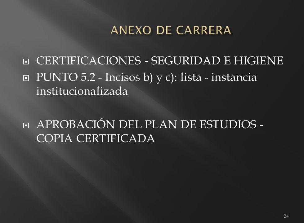 CERTIFICACIONES - SEGURIDAD E HIGIENE PUNTO 5.2 - Incisos b) y c): lista - instancia institucionalizada APROBACIÓN DEL PLAN DE ESTUDIOS - COPIA CERTIFICADA 24